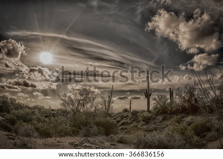 An image of a sunset at Superstition desert in Arizona shows the rugged detail of a dry wilderness and saguaro cactus. - stock photo