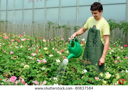 An image of a young gardener in a greenhouse - stock photo