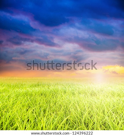 An image of amazing landscape during sunset in spring