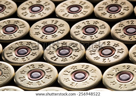 an image of 12 gauge shotgun shells used for hunting - stock photo