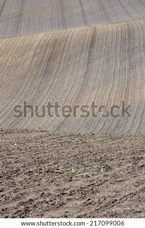 An image of plough agriculture field before sowing - stock photo