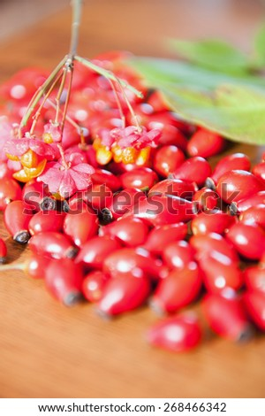 An image of rose hip  - stock photo