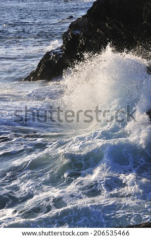 An Image of Sea