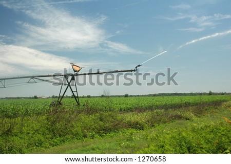 An irrigator sprays water on the corn field. - stock photo
