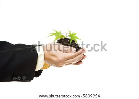 An isolated shot of a businessman holding a new plant - stock photo