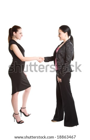 An isolated shot of two businesswomen shaking hands - stock photo