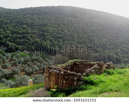 An old abandoned chamber near the forest in Birqish in the north of Jordan