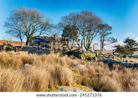 An old abandoned farmhouse at ditsworthy Warren near Sheepstor on Dartmoor National Park in Devon - stock photo
