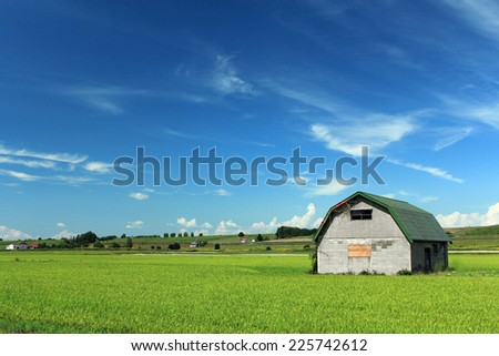 An old concrete barn in the middle of vibrant green rice field under blue sky with cloud. - stock photo