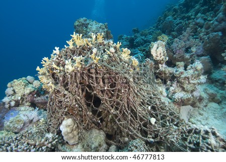 An old discarded fishing net over the coral reef. Red Sea, Egypt. - stock photo
