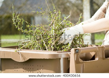An old hand of active senior with white gloves composting twigs and a lot of others garden things; doing spring / summer work on garden (focus on hand) - stock photo