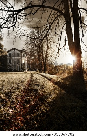 An old haunted house stands at the end of a driveway littered with dry leaves