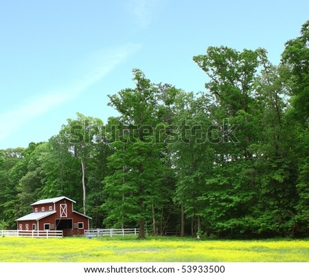 an old horse barn in a field of buttercups in the woods on a gorgeous day - stock photo