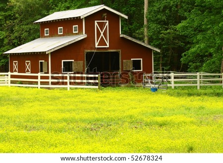 An old horse barn with a butter cup field with room for your text - stock photo