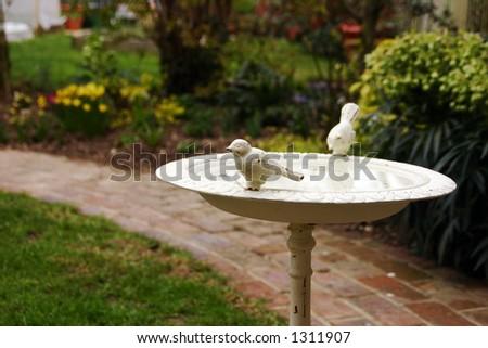 An old ornamental bird-bath in a garden - stock photo