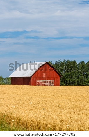 An old red barn in a golden field has an old hay wagon parked in front of it. - stock photo