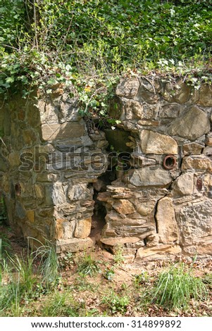 An old rock cracked nearly in two with plants growing inside it - stock photo