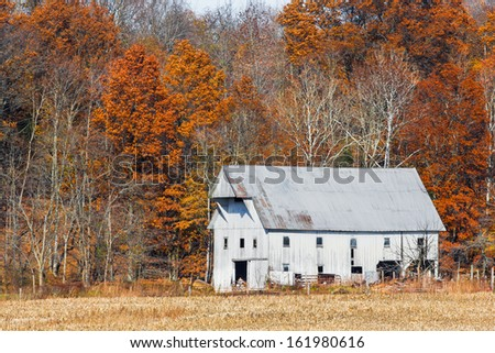 An old white barn is backed by colorful autumn foliage in rural Indiana. - stock photo