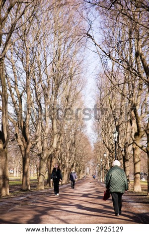 An old woman on a walk in a park in the early spring sunshine.