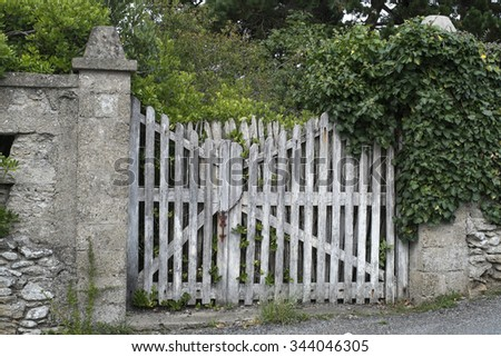 An Old Wooden Gate Partly Covered With Ivy Leading To An Old Garden With Old  Trees