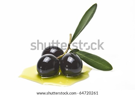 An olive branch with three premium olives on some olive oil on a white background. - stock photo