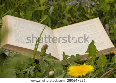 An open book on green grass with field flowers