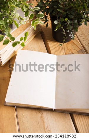 An open book with blank pages - stock photo