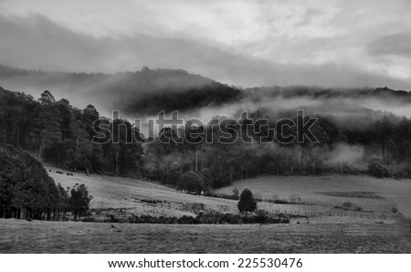 An open field surrounded by hills, trees and shrubs. - stock photo