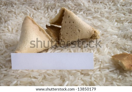 An opened fortune cookie on a bed of white rice - stock photo