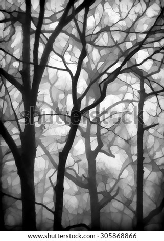 An original photograph of fog shrouded bare trees in the Poconos of Pennsylvania transformed into a digital illustration - stock photo