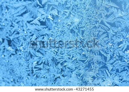 An ornament of frost on a window
