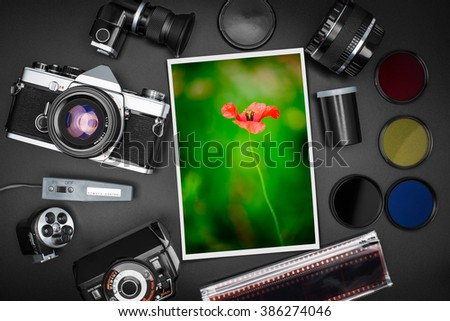 Analog SLR camera equipment around a printed photo of a red flower - stock photo