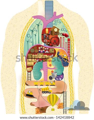 Anatomical cartoon map - stock photo