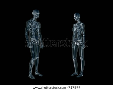 Anatomically correct Xray, x-ray of the human male body, man and woman. Both facing each other. 3D render, illustration over black.  Different body parts can be requested via forum. - stock photo