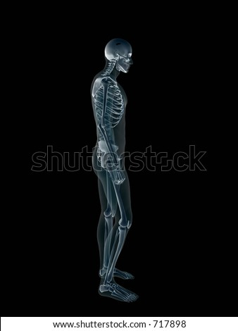 Anatomically correct Xray, x-ray of the human male body, man and woman. 3D render, illustration over black. View form left profile.  Different body parts can be requested via forum. - stock photo