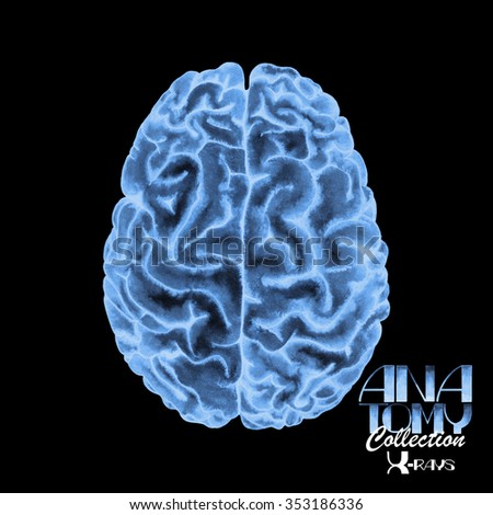 Anatomy collection - X-rays of brain. Watercolor isolated organ