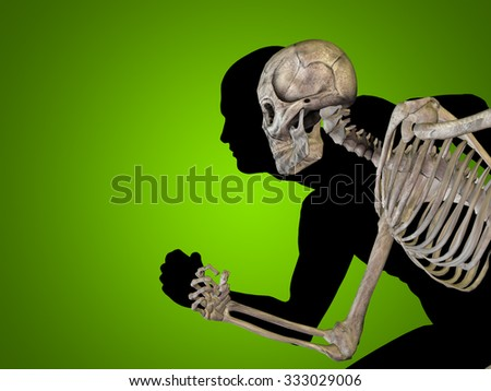 Anatomy concept human man medical or health body chest, head green bright background for medical, science, health, male, biology, medicine, bone, anatomical, muscular, system, face, cranium, spine - stock photo