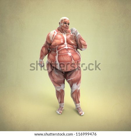 Anatomy of an Obese Body