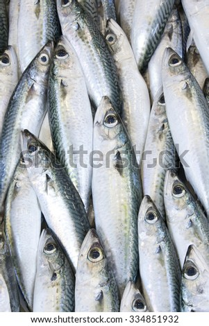 Anchovy fish background  - stock photo
