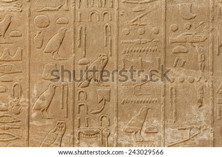 Ancient egypt hieroglyphs in the Karnak Temple, Luxor - stock photo
