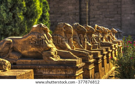 Ancient Egyptian sphinxes with head of Ram in Luxor, Egypt - stock photo