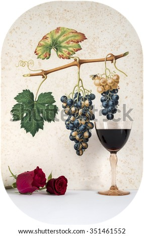 Ancient glass of red  wine background grape cluster decorated, romantic moment with red rose ,cutout photo,  natural light, vertical photo - stock photo