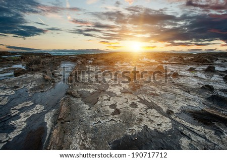 Ancient petrified forest on the coast at Curio Bay, Otago - New Zealand - stock photo