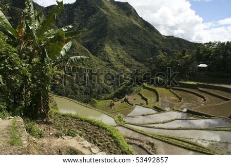 ancient rice terraces of batad, in northern luzon, the philippines - stock photo