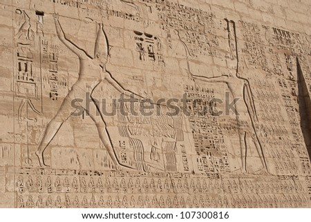 Ancient stone carved Egyptian hieroglyphics