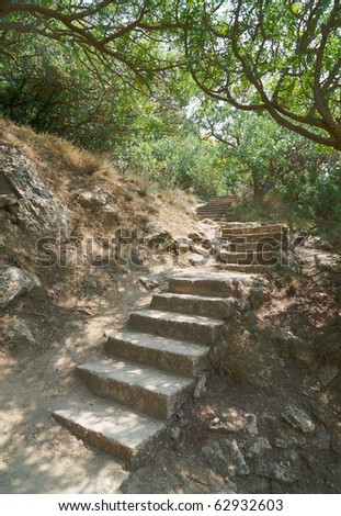 Ancient stone ladder among trees - stock photo