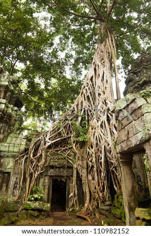 Ancient Ta Prohm or Rajavihara Temple at Angkor, Siem Reap, Cambodia. - stock photo