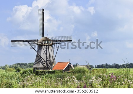Ancient windmill in a field with colorful vegetation at Kinderdijk in The Netherlands - stock photo
