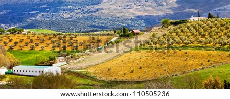 Andalusia picturesque hilly countryside panorama with olive trees groves on cultivated fields in southern Spain, Malaga province. - stock photo