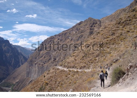 Andes scenery at Colca Canyon in Peru ( South America)